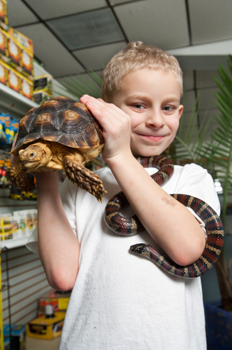 young boy holding large tortoise and snake in pet store
