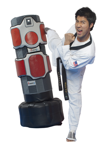 portrait of martial arts expert kicking bag